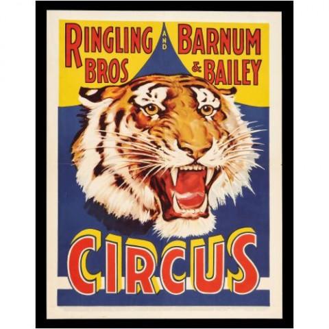 Pôster-Circus-Vintage