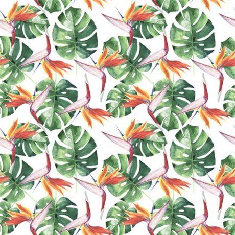 Papel de Parede Floral Folhagem Costela de Adao